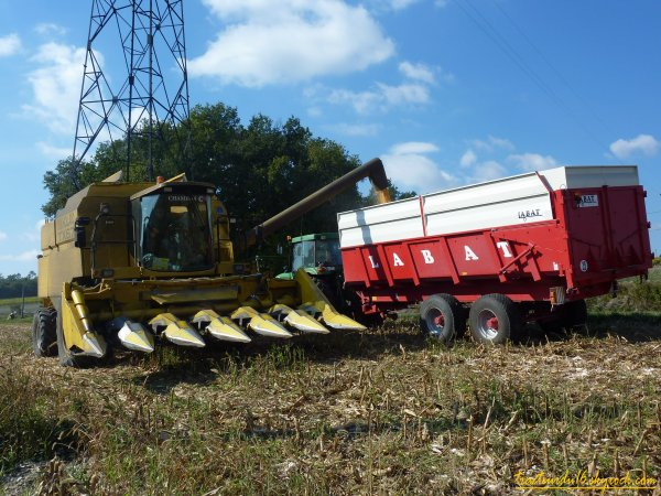 moisson de maïs 2010 ( 18 octobre 2010 )