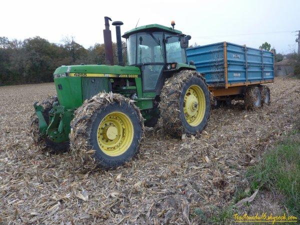moisson de maïs ( 26 novembre 2010 )