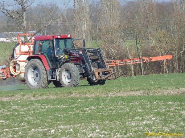traitement des blés 2011 ( 10 février 2011 )