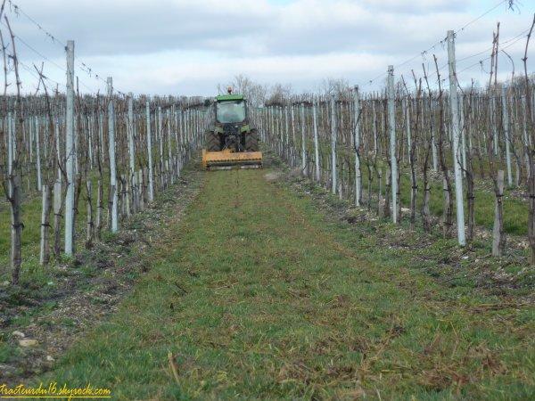 broyage des javelles de vigne 2011 ( 25 février 2011 )