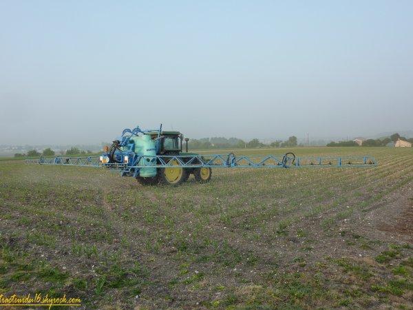 Désherbage des maïs 2011 ( 29 avril 2011 )