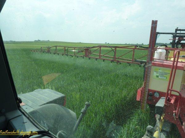 Traitement des blés 2011 ( 29 avril 2011 )