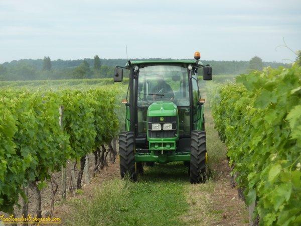 Traitement des vignes 2011 ( 15 juin 2011 )