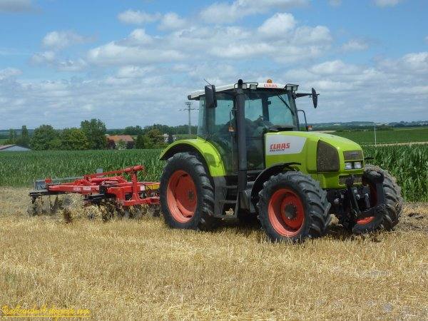 Déchaumage pour semis de colza fourrager ( 20 juin 2011 )
