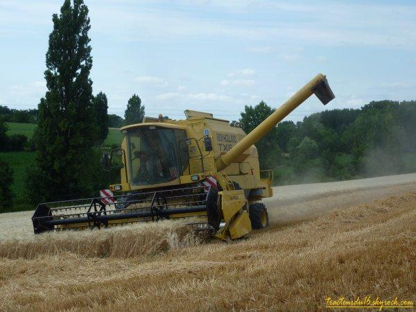 Moisson de blé dur ( 21 juin 2011 )