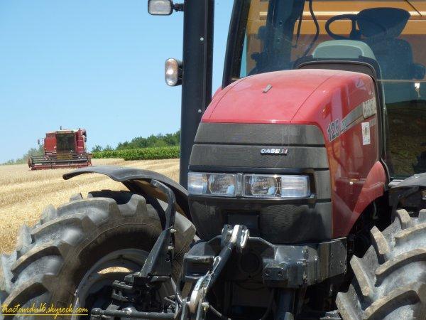 Moisson de blé 2011 ( 25 juin 2011 )