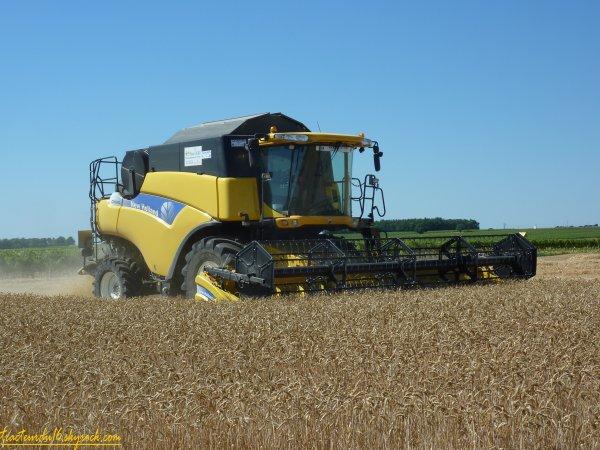 Moisson de blé tendre 2011 ( 25 juin 2011 )