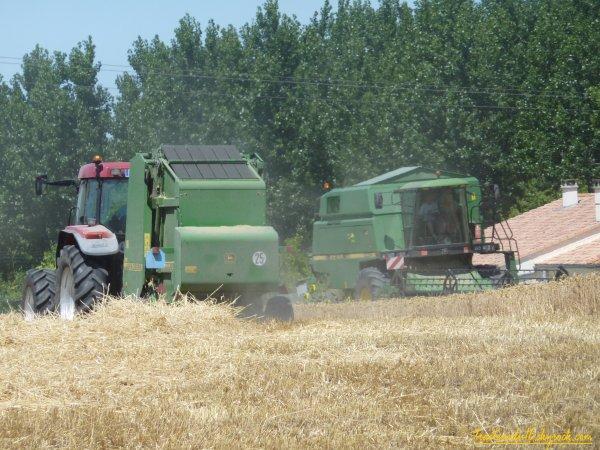 Moisson de blé et pressage 2011 ( 29 juin 2011 )