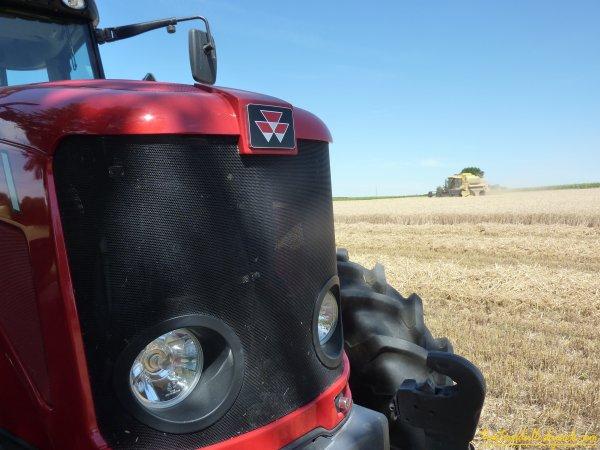 Moisson de blé 2011 ( 03 juillet 2011 )