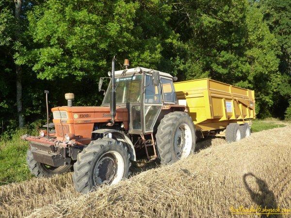 Moisson de blé 2011 ( 11 juillet 2011 )