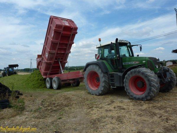 Ensilage de maïs 2011 ( 15 juillet 2011 )