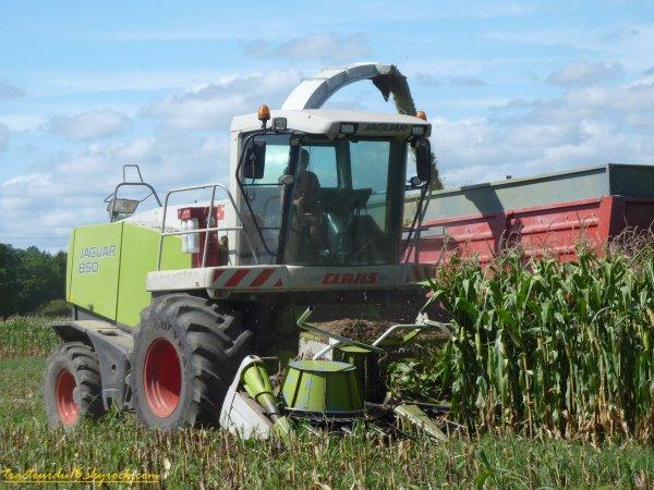 Ensilage de maïs 2011 ( 12 et 19 aout 2011 )