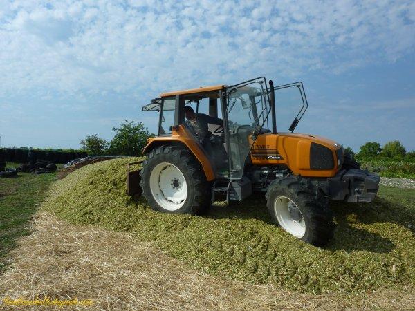 Ensilage de maïs 2011 ( 17 aout 2011 )