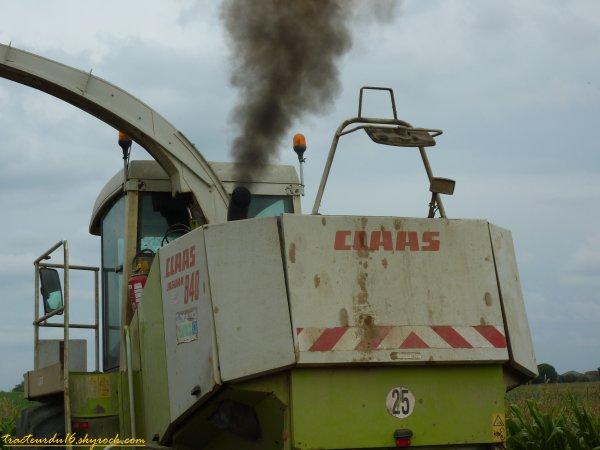 Ensilage de maïs 2011 ( 18 aout 2011 )
