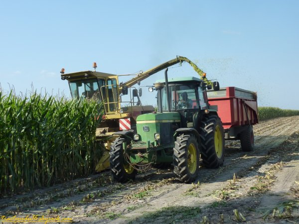 Ensilage de maïs 2011 ( 19 aout 2011 )