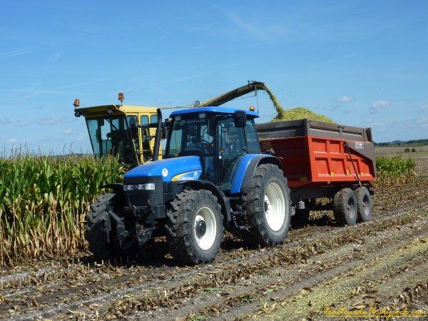 Ensilage de maïs 2011 ( 29 aout 2011 )