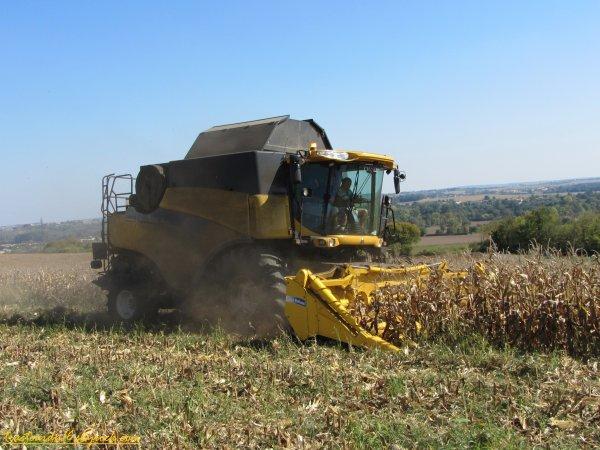 Moisson de maïs 2011 ( 01 octobre 2011 )