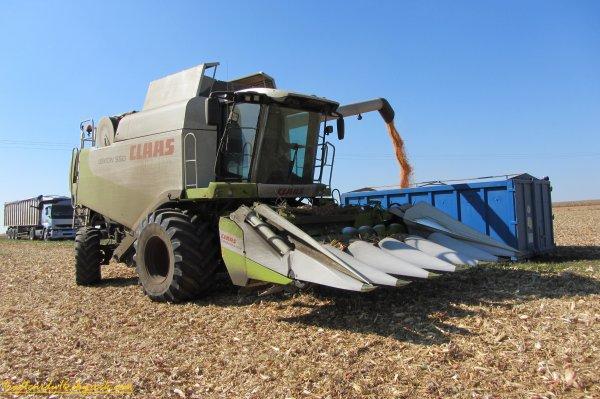 Moisson et broyage de maïs 2011 ( 01 octobre 2011 )