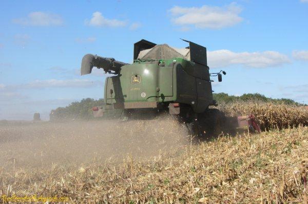 Moisson de maïs 2011 ( 05 octobre 2011 )