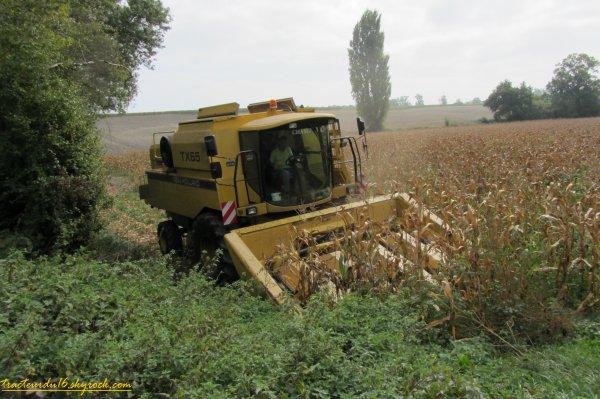 Moisson de maïs 2011 ( 12 octobre 2011 )