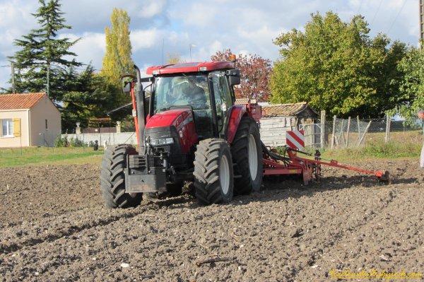 Semis de blé 2011 ( 20 octobre 2011 )