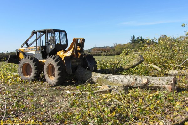 Travaux forestier 2011 ( 21 octobre 2011 )