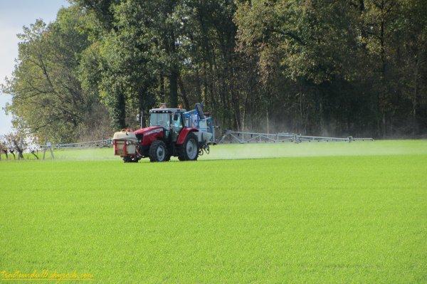 Traitement des blés 2011 ( 16 novembre 2011 )