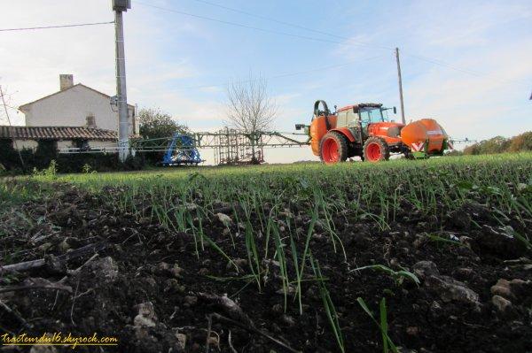 Traitement des blés 2011 ( 19 novembre 2011 )