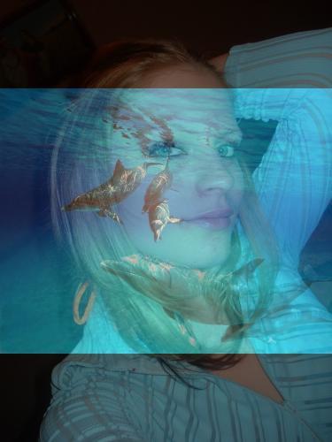 rooooooooooooo les zoliiiiie dauphin ^^ ^^ ^^