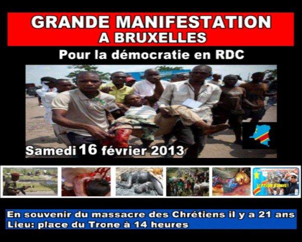 GRANDE MANIFESTATION DU 16 FEVRIER 2013 A BRUXELLES.