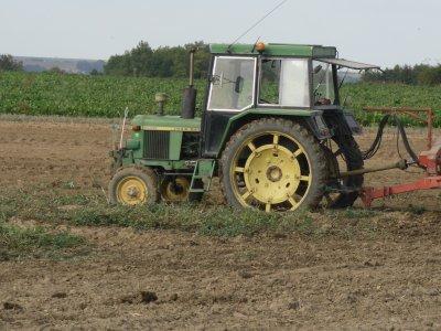 Pommes de terre 2011