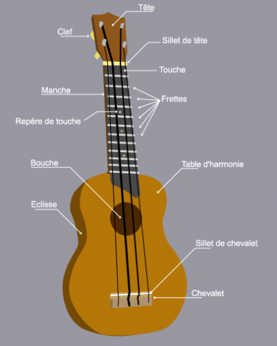 guitare 4 cordes pincees