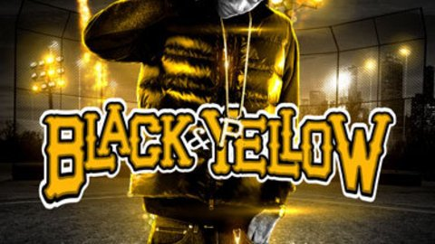 black & yellow (2011)