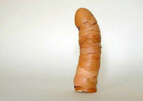 egg..