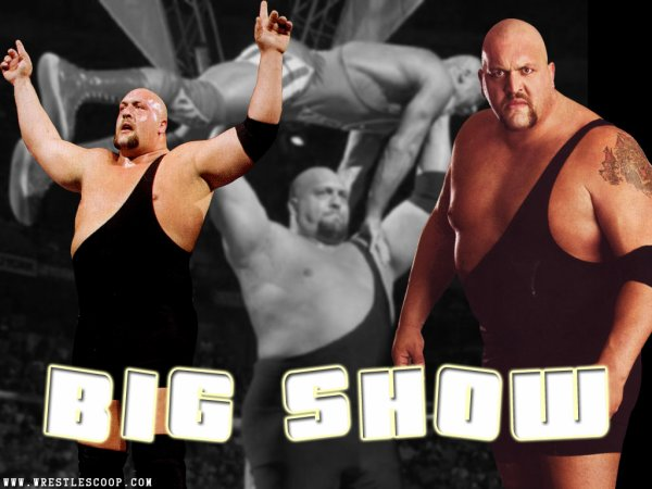 THE BIG SHOW (Smackdown) Champion par équipes
