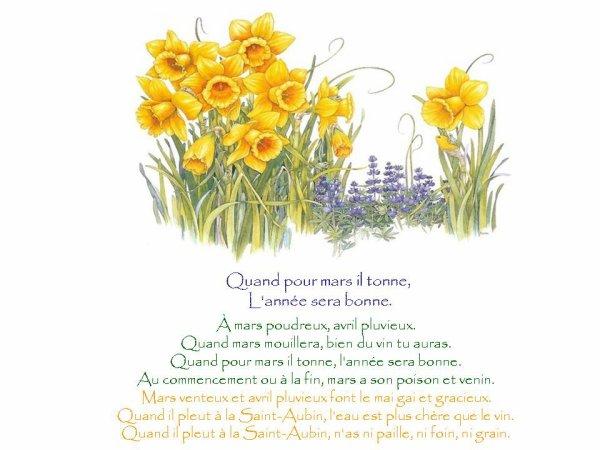 Le printemps ..............