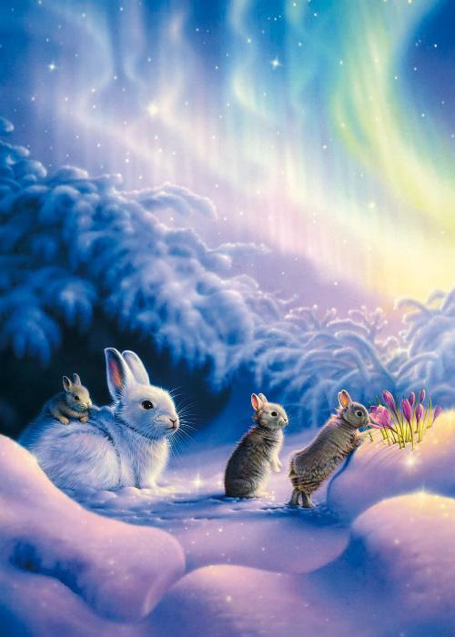 Le paradis des lapins. - Blog de Madame-d-Artois