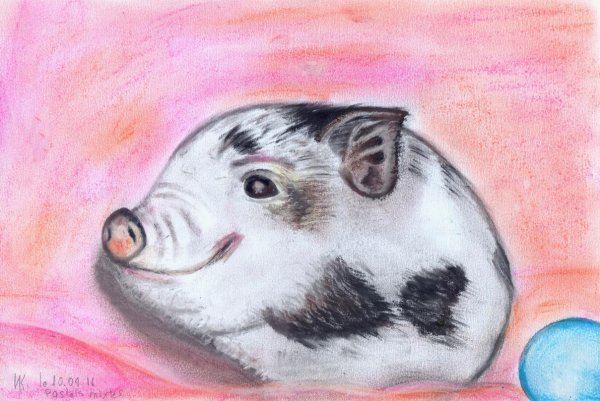 Pastels mixtes. Cochon qui s'en dédie !