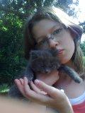 Photo de refuge-des-chats-perdu