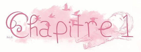♥ Chapitre 1 ♥