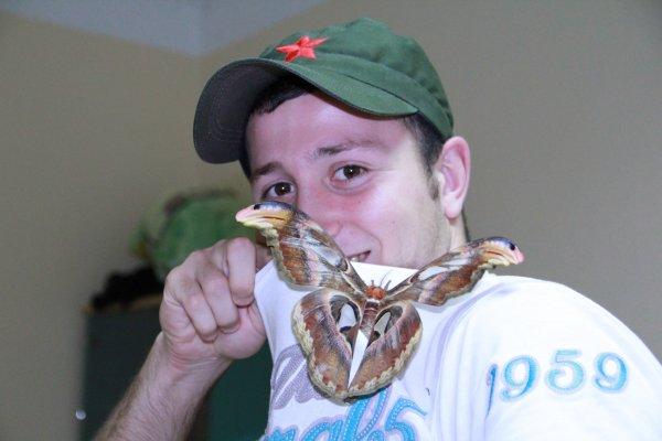 20-04-2011 : Visite d'un papillon...
