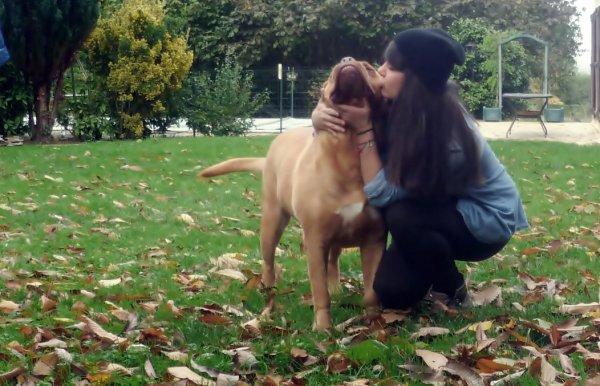 _Je ne pourrais vivre sans chien. ♥