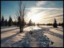 Photo de Snow-Gilded