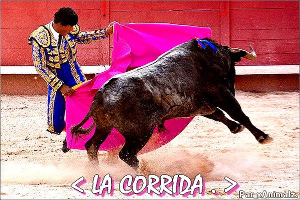 < La Corrida  (c) xAnimalz. >