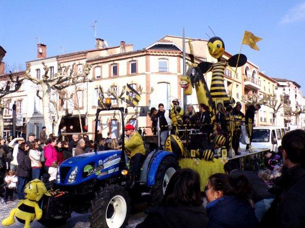 carnaval d'Albi 2018