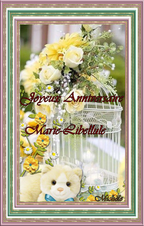 Anniversaire de Marie-Libellule
