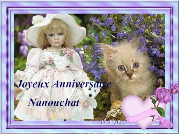 Anniversaire de Nanouchat