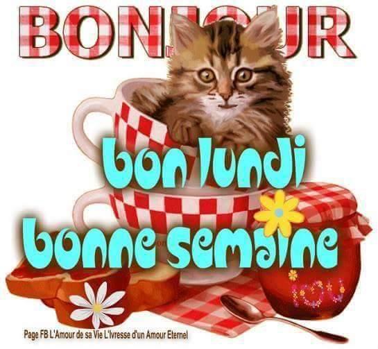 bonne semaine!!!!!!!!!!!!mes amies-amis!!!!!!!!!!!!!