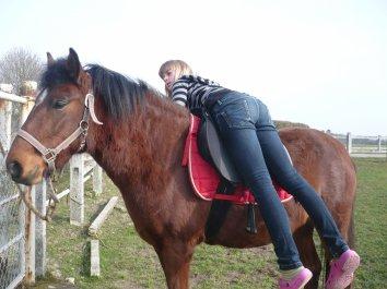 « Apprenez à écouter ce que votre cheval murmure à votre oreille. »  Elisabeth de Corbigny.