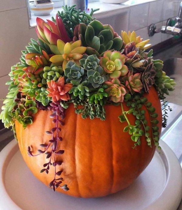 Joyeuse fête d'halloween